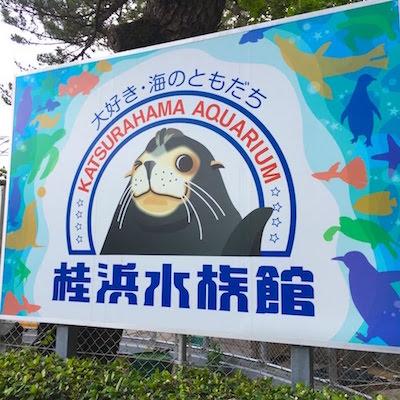 桂浜水族館1