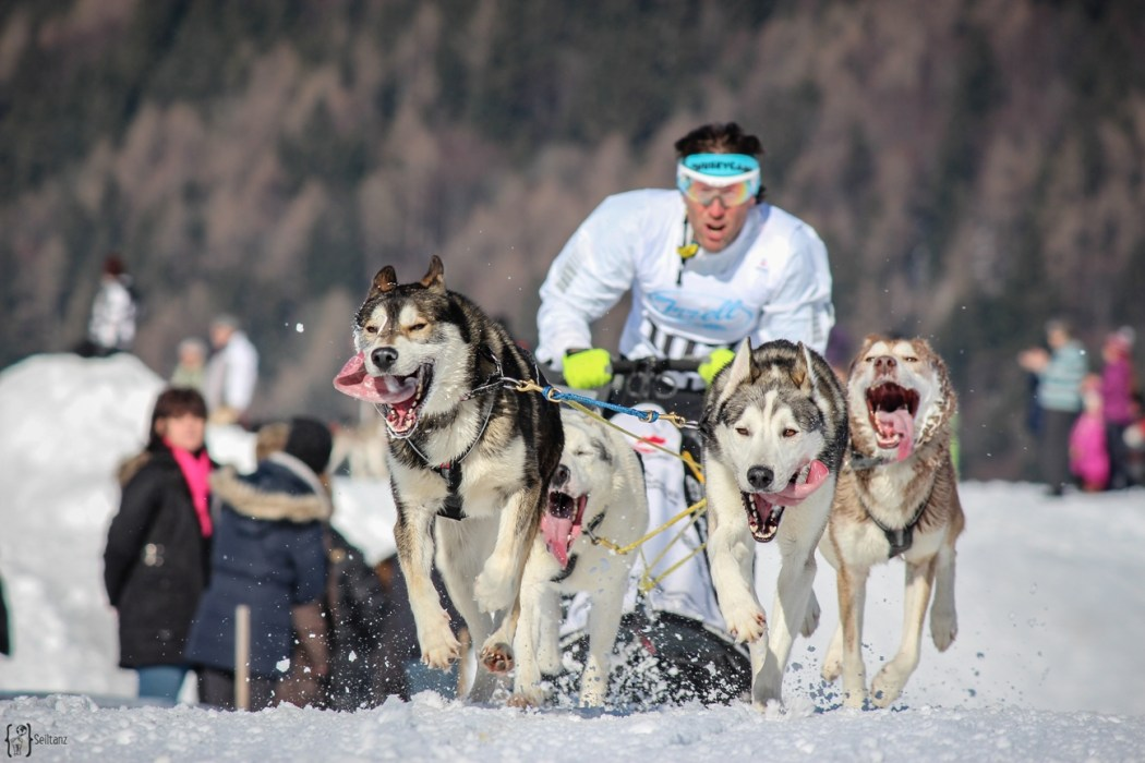 11 Musher Inzell