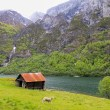Roadtrip in Norwegen: Unterwegs im Aurland