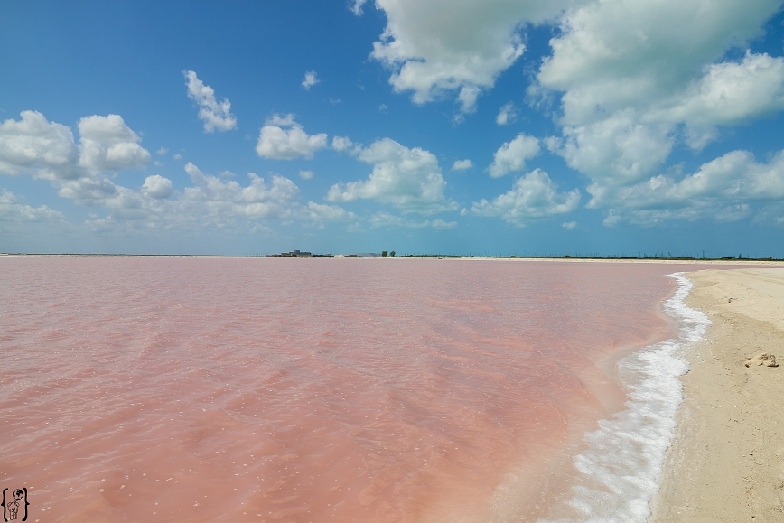 k-14-pink-water-las-coloradas-yucatan