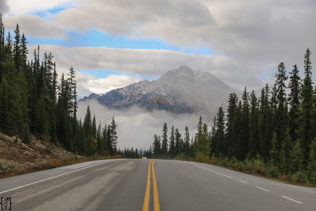 Roads in Banff NP