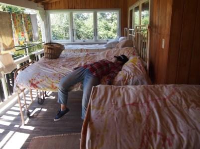Akari having a nap