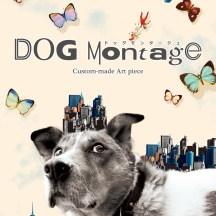 DOG mongate