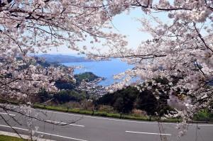 ジオスポ Vol.5 ~野福峠お花見シャルソン~ やります!