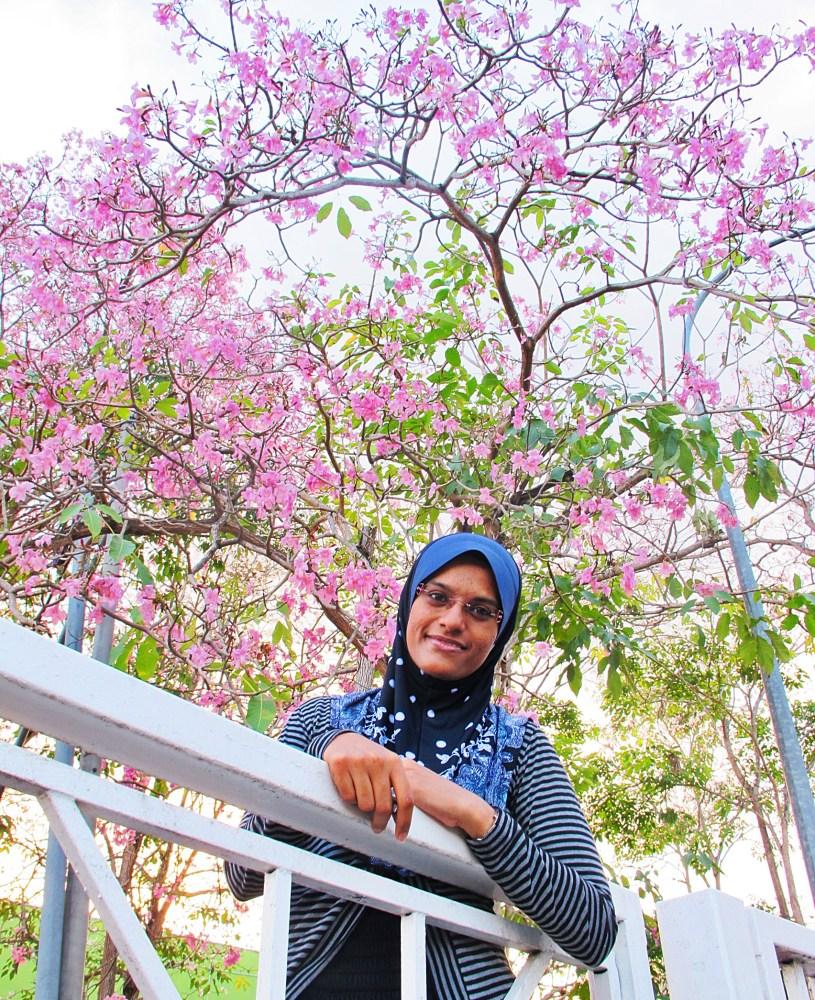 Spring of Sakura (4/4)