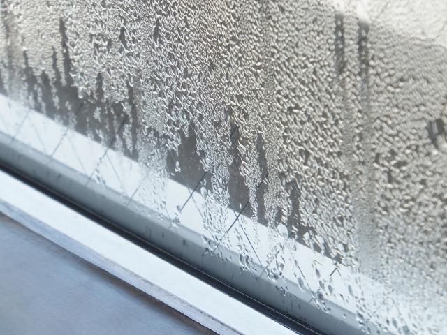 マンションの湿気対策〜1階の部屋はカビが出やすい!解決方法は?