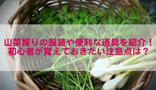 山菜採りの服装や便利な道具を紹介!初心者が覚えておきたい注意点は?