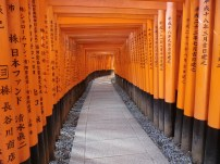 Fushimi Inari Taisha Shrine in Japan.