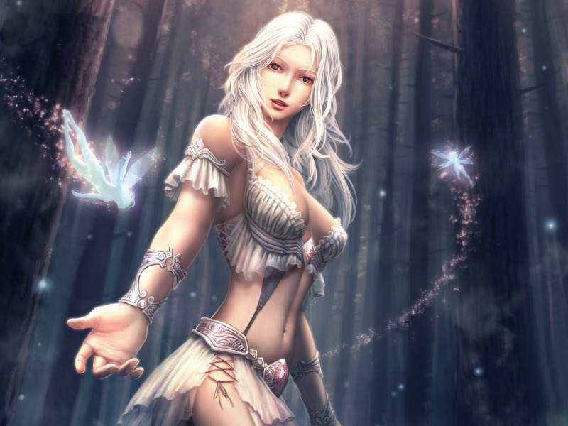 fairies fantasy art fantasy girls 1600x1200 wallpaper_www.wall321.com_45