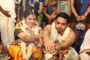 Tamil TV Serial Actor Actress Wedding Photos