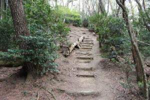 南宮山ハイキングコース