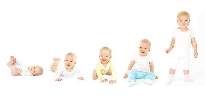 23+ Tahapan Perkembangan Bayi Lengkap (orang tua wajib tau) 1