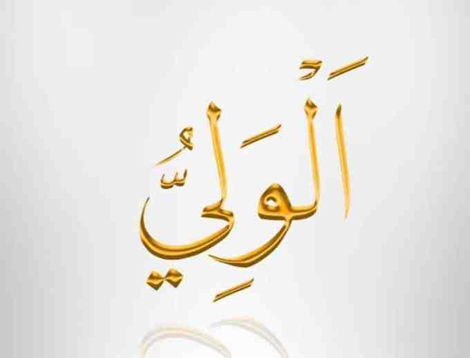 Al Waliyy Yang Maha Melindungi