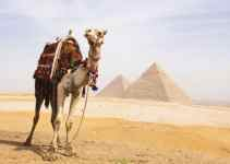 Kumpulan Doa Nabi Yusuf Beserta Arti, Arab dan Latinnya 4