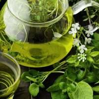 Najcenniejsze zalety zielonej herbaty