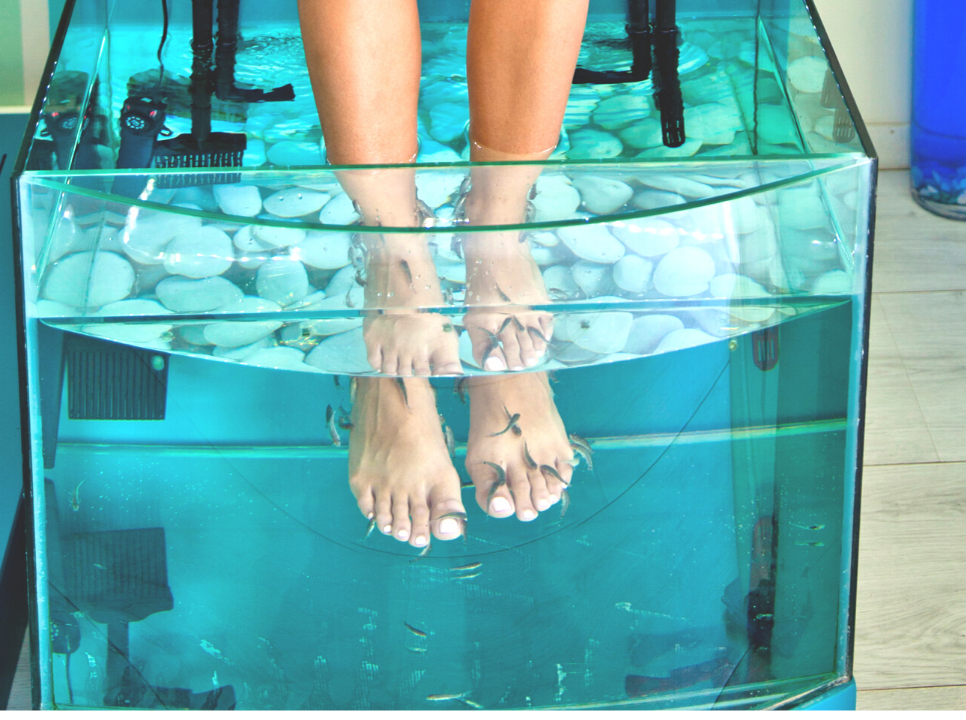co to jest fish pedicure