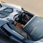 Lamborghini Centenario Roadster, die mag op de oprit staan