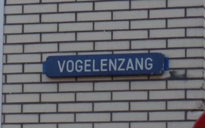 Een straat met de reputatie van prostitutie