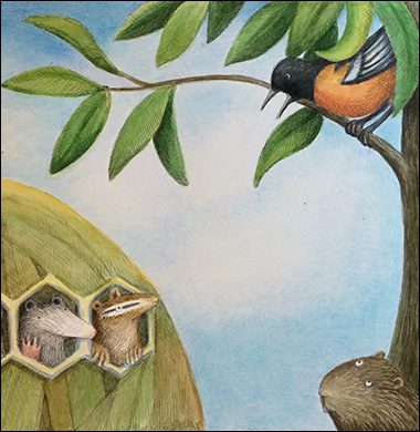 Oriole Talking, Anne Hunter, Author and Illustrator