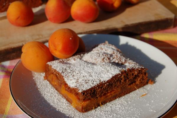 Rezept Schoko-Marillenkuchen