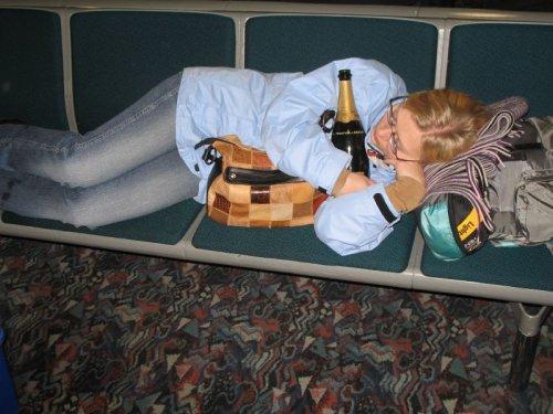Das Programm der soziologischen Forschung des Alkoholismus