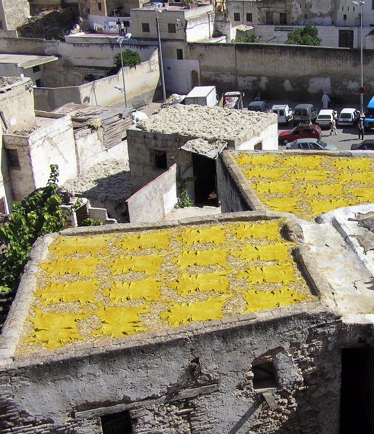 zum Trocknen ausgelegtes Leder auf einem Dach in Marokko