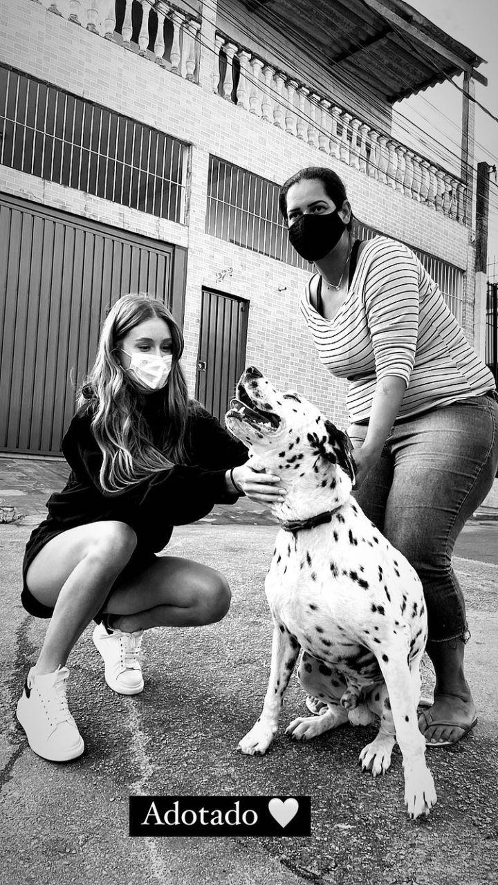 Marina Ruy Barbosa adota cão