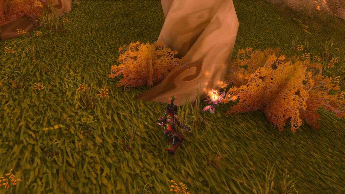 World of Warcraft - Pegando uma das flores no mapa 02