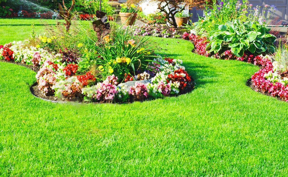 Small Flower Garden Ideas For Beginners Hobby Tips 2022