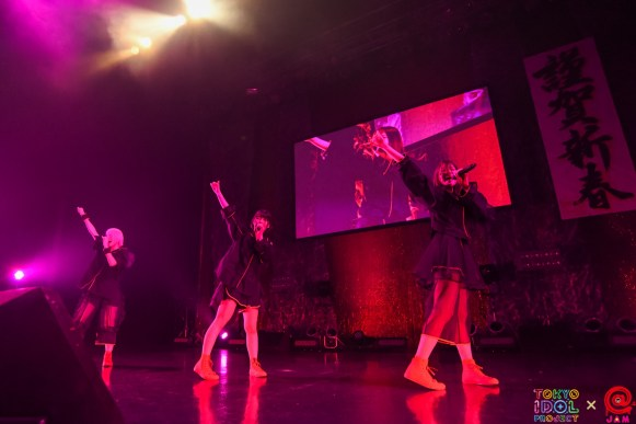NEW YEAR PREMIUM PARTY 2019 Maison book girl