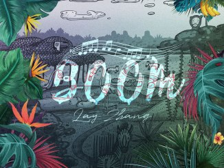 LAY-BOOM-Artwork