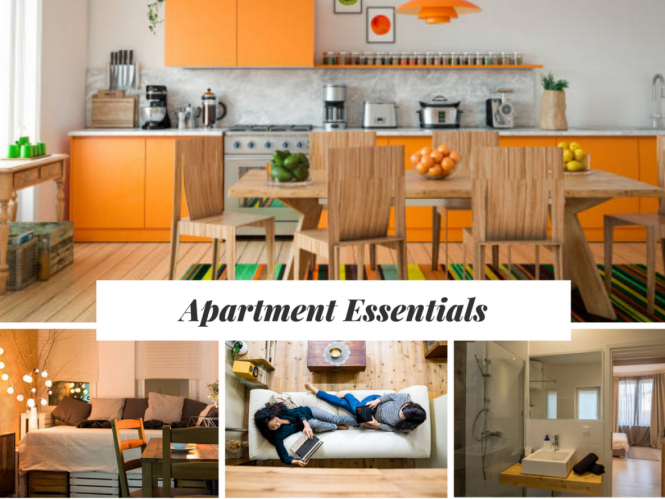 Essential Items For Hassle Free Move On