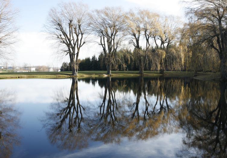 Chalet Pond