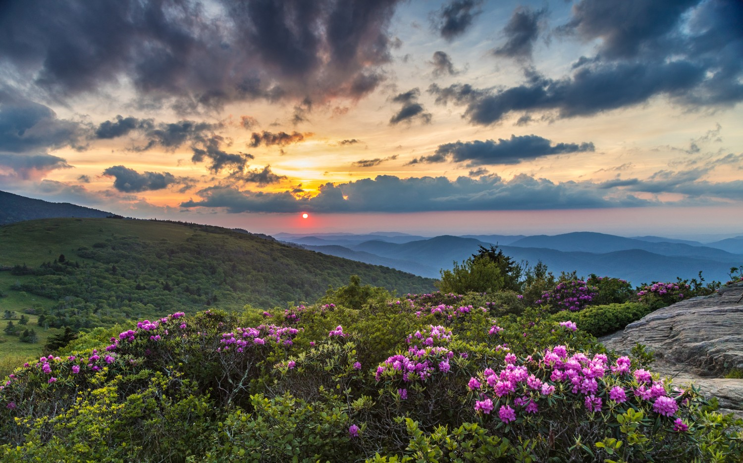 elope in the blue ridge mountains
