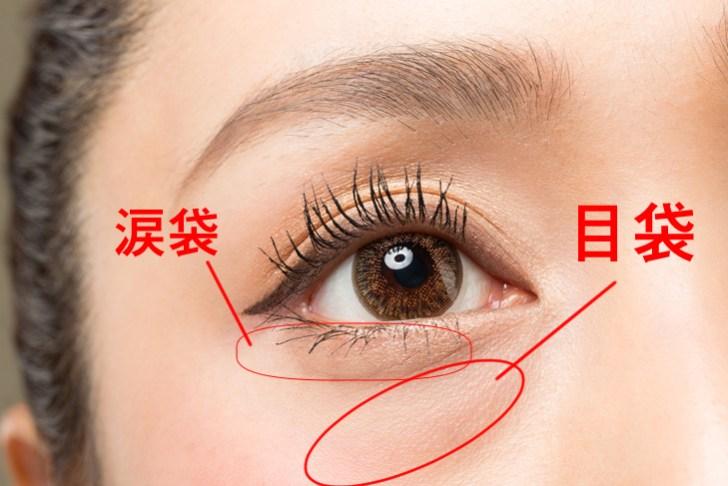目の下の脂肪の解説画像