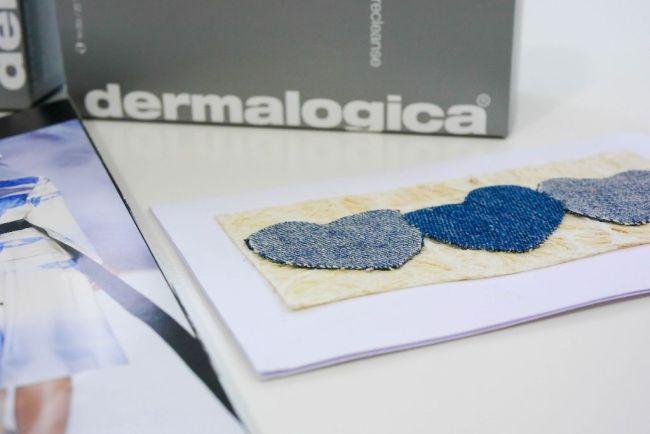 dermalogica gesichtspflege precleanse daily microfoliant active moist 4