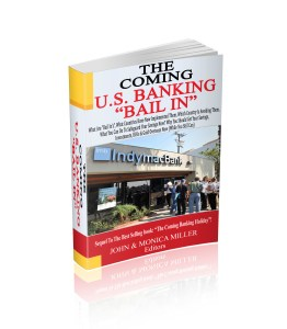 Cover THE COMING U S  BAIL IN 3D