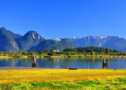 On-the-Shore-of-the-Pitt-River-Pitt-Meadows-BC-Canada-300x420