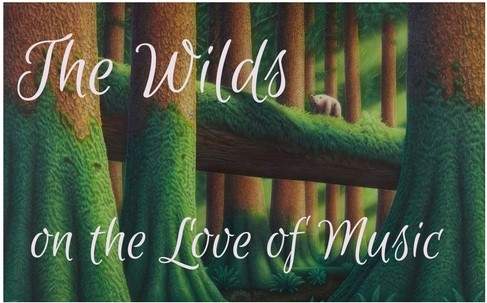 the-wilds