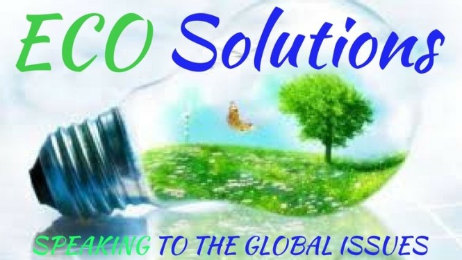 eco-solutions-banner