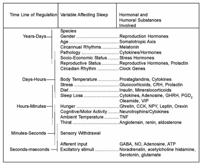 Factors that affect sleep and their time-scale, source: https://www.ncbi.nlm.nih.gov/pubmed/19075717/