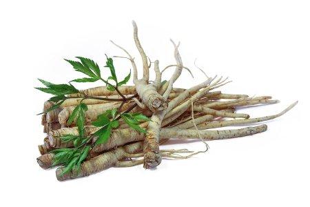 bigstock-Fresh-Ginseng-Root--74672641-min
