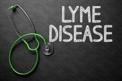 All about Borrelia, Lyme Disease & Natural Treatments