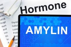 Amylin: Function, Associated Diseases, & Drugs