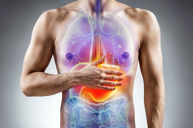 Food Consumption and Digestion