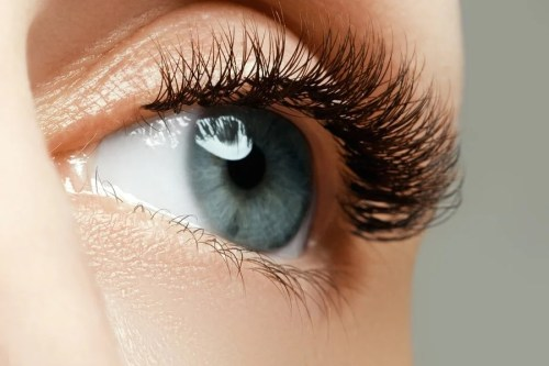 bigstock-female-eye-with-long-eyelashes-141193190-min