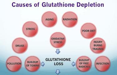 27 scientifically proven health benefits of glutathione - selfhacked, Skeleton