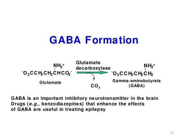biochemistry-amino-acid-oxidation-21-638