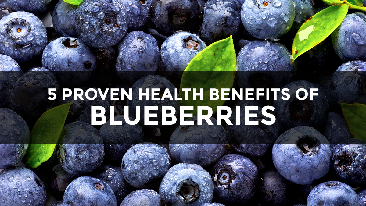 Blueberries Antioxidant