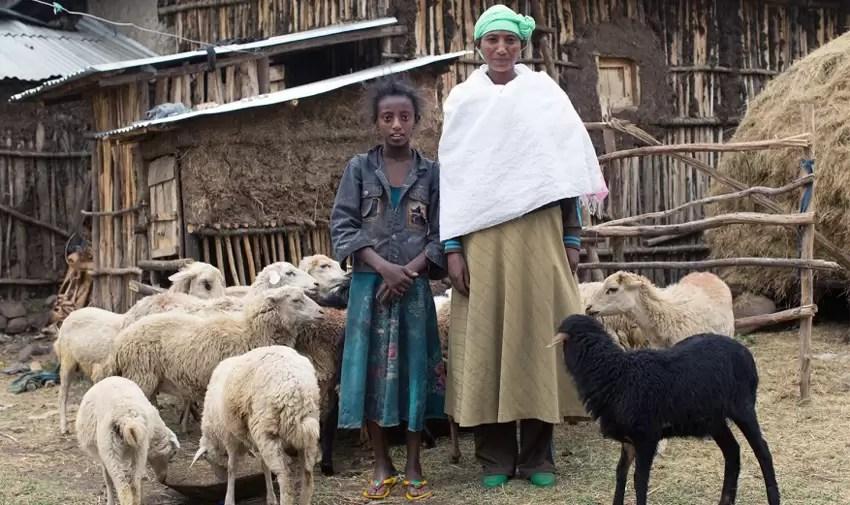 ethiopia_teja_850x504_px